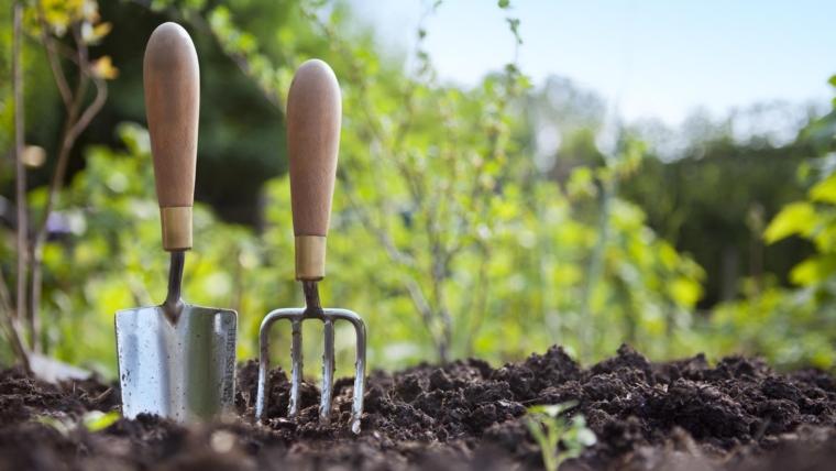 Η κηπουρική κάνει καλό στο ανοσοποιητικό σύστημα